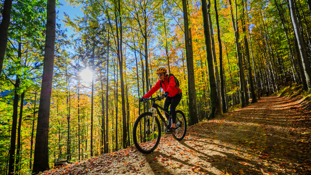 Radfahrer in Winterberg